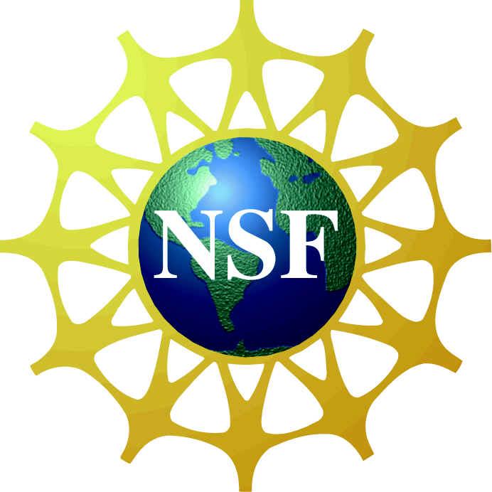 Allen School News » 7 NSF Graduate Research Fellowships To