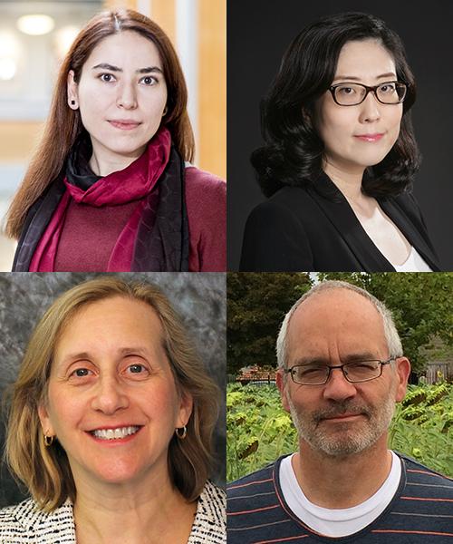 Safiye Celik, Su-In Lee, C. Anthony Blau, and Pamela Becker