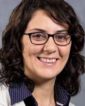 Hannaneh Hajishirzi
