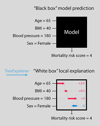 "Diagram illustrating difference between ""black box"" and TreeExplainer models"